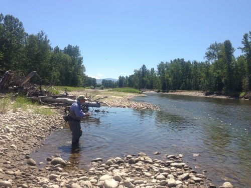 Trout hunting in Montana